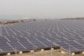 Nissan crea proyecto de granja solar