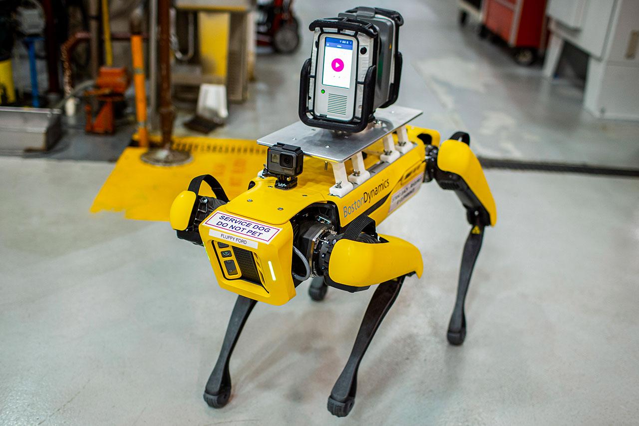 Perros robots, los mejores amigos de los ingenieros en Ford